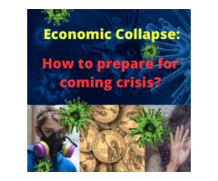 Virus 2020 - Economic Collapse Guide - How To Survive The Crisis