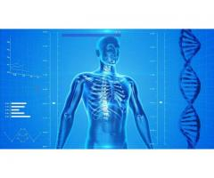 Human Anatomy & Physiology Study Course