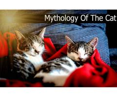 Mythology Of The Cat waw