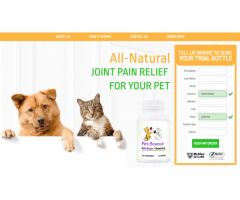 Natural Pain Relief for your Pet