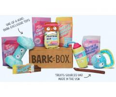Barkbox the best store with everything for your dog