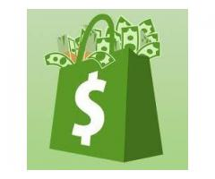 New system teaches people how to earn $100 a day on Shopify