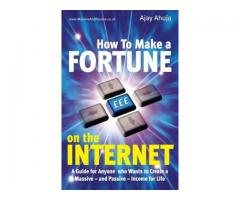 How to make a fortune on the Internet free book